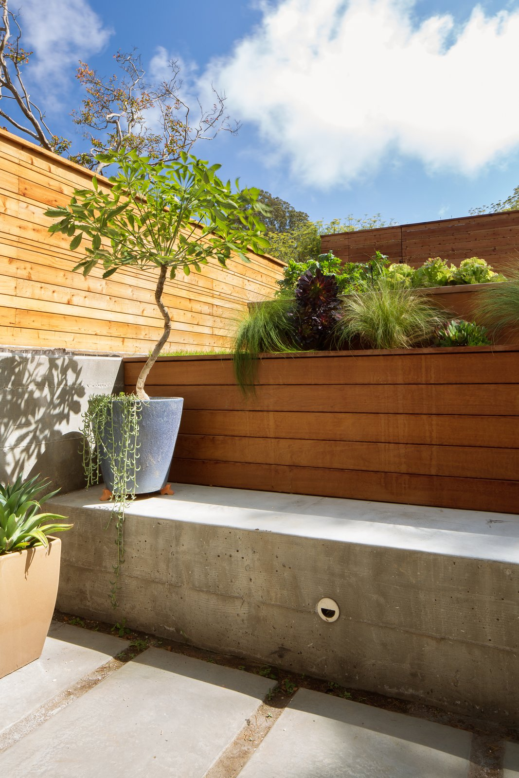 Outdoor, Pavers Patio, Porch, Deck, and Small Patio, Porch, Deck Backyard sunken patio  27th Street - Noe Valley by patrick perez/designpad architecture