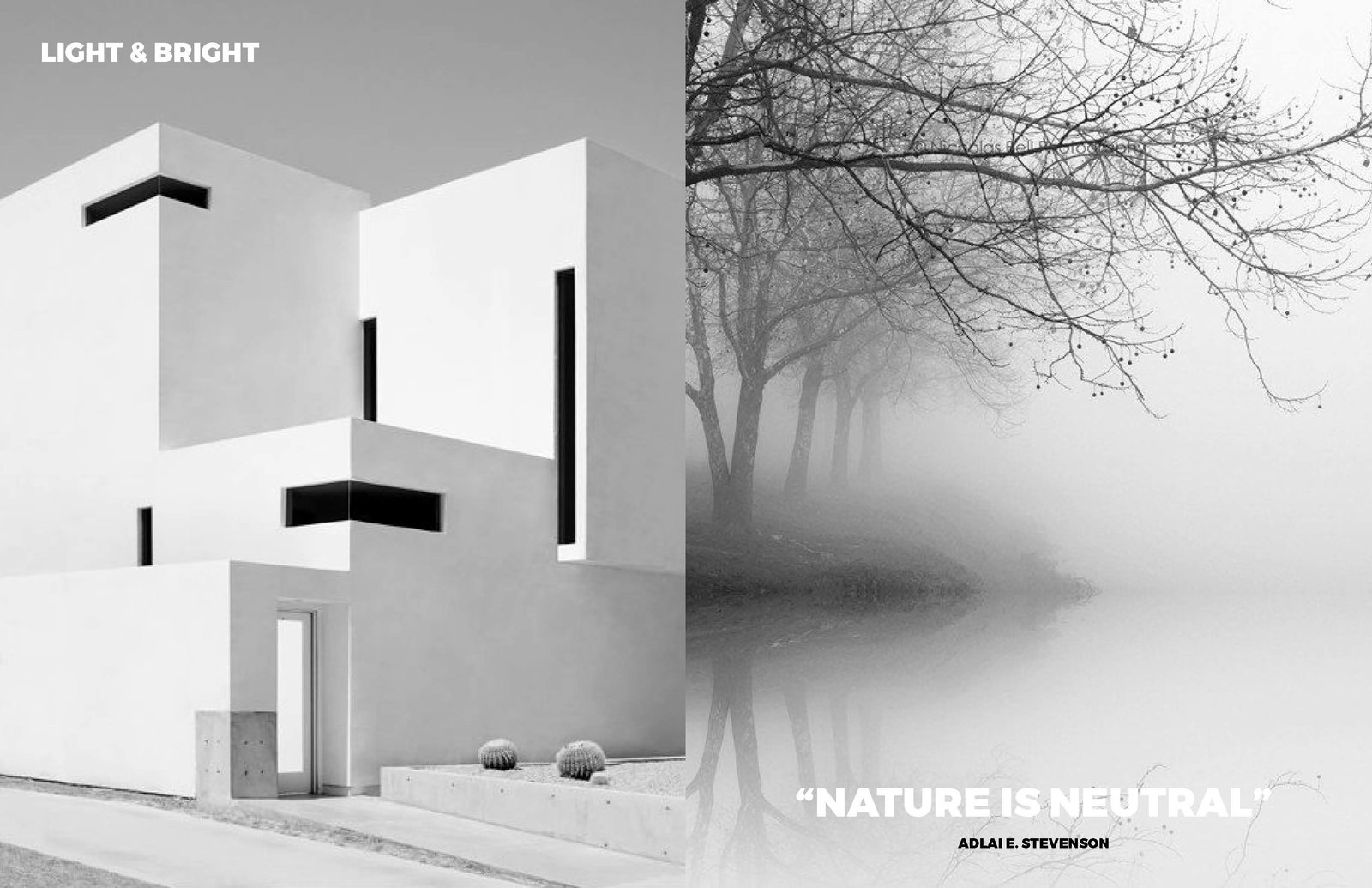 Left: Image by the amazing Photographer Nicholas Alan Cope Right: From: French landscape from Brume, Nature is our best source  Photo 4 of 9 in Light and Bright /  Nuetrals Shine Through
