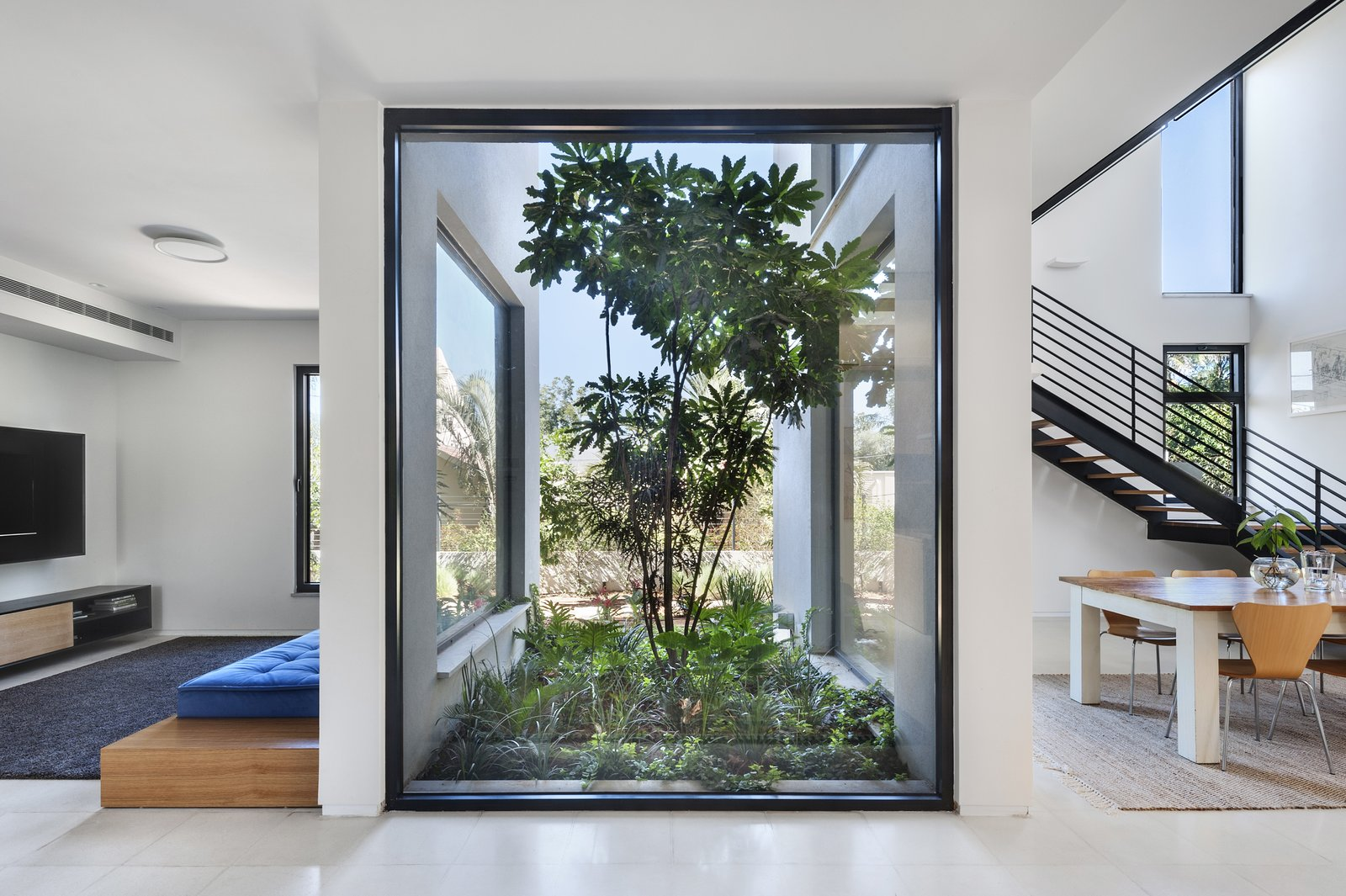 Windows, Metal, and Picture Window Type Ravit Dvir Architecture and Design  The House in Harutzim
