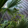 Modern home with Outdoor, Wood Patio, Porch, Deck, Gardens, and Front Yard. fan palm Photo 8 of Saquila