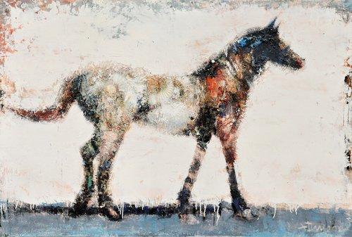 BIANCO  Equus