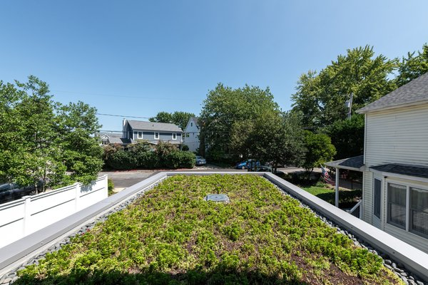 Greenroof Outside of Office