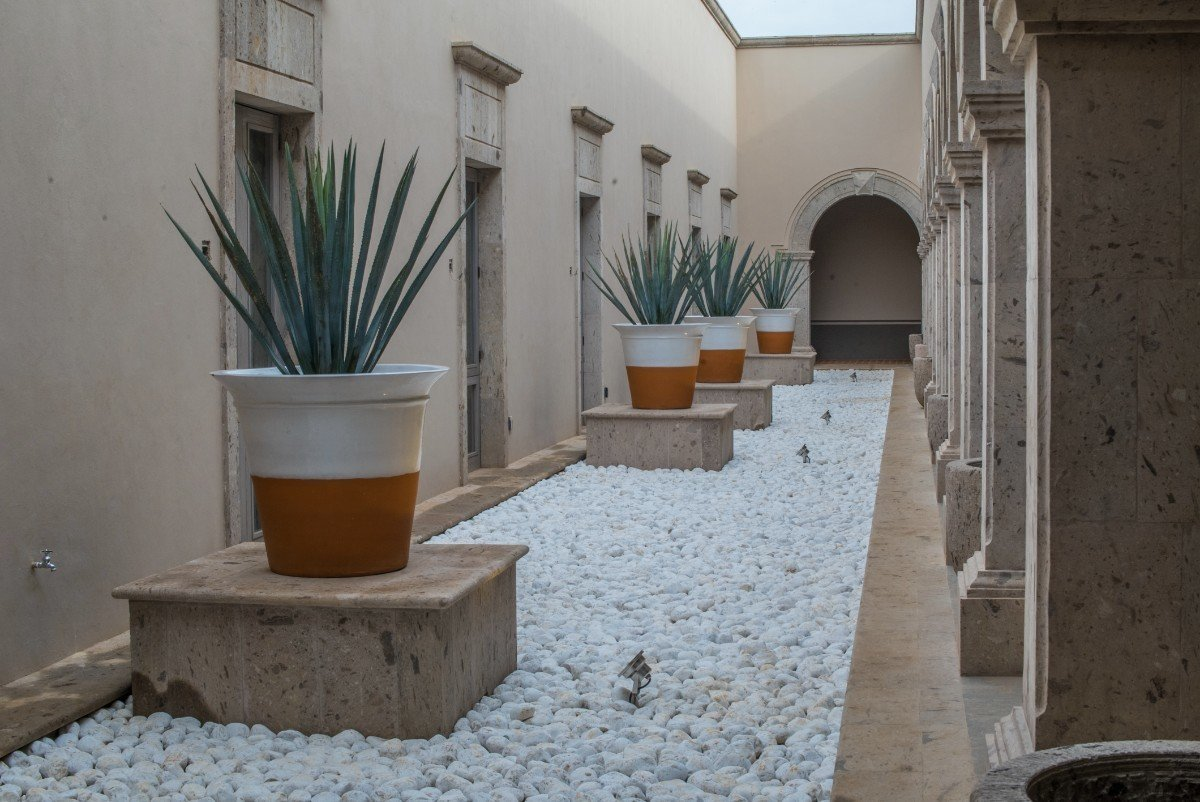 Cacti, agave and semi-desert vegetation were used to reduce facility water consumption and rain absorption wells were installed to water the plants present.  Photo 3 of 15 in Patrón Designed a Spanish Colonial Guest House with Modern Flair