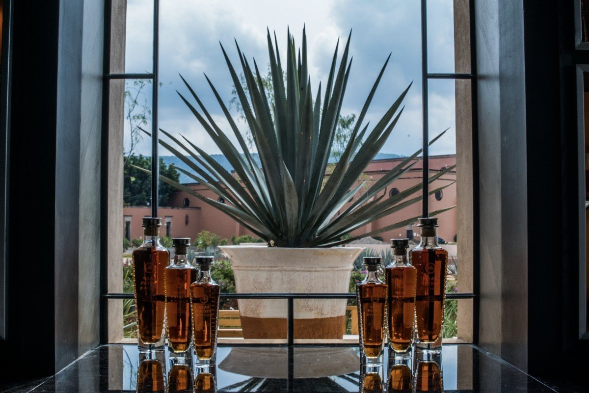 Windows are strategically places to bring in natural light, provide breathtaking views and promote maximum are flow.  Photo 6 of 15 in Patrón Designed a Spanish Colonial Guest House with Modern Flair