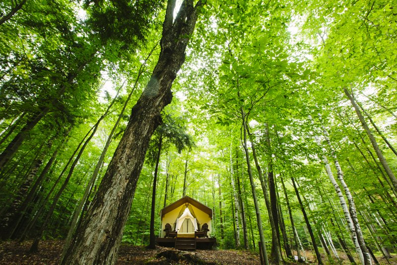 Outdoor, Woodland, and Trees Take long hikes on winding paths and mountain trails, wade barefoot in cool streams, canoe on tranquil lakes or just gaze at the star filled night sky all while enjoying the sounds of the wild. Orenda provides with six spacious, private canvas cabins, uniquely named; – Hemlock, Hillsider, Birch, Lodge, Mill Creek and Ridge Top; each completely furnished to comfortably accommodate 2 to 4 guests depending on which cabin is selected and size of your party.  The rustic  Photo 5 of 14 in 12 Terrifically Glamorous Camping Options
