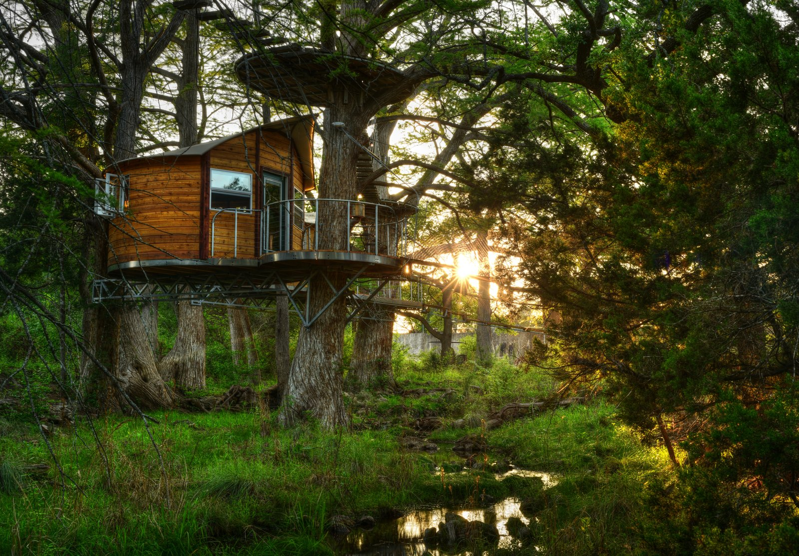 Exterior, Treehouse Building Type, and Wood Siding Material The Willow & Juniper tree house by ArtisTree  Photo 2 of 16 in Experience Tree-Top Living at One of These Sustainable Tree Houses