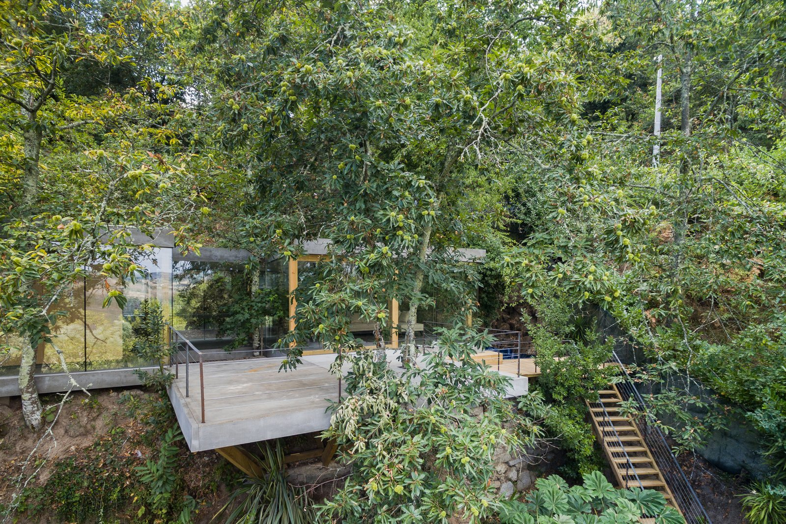 Outdoor, Slope, Large Patio, Porch, Deck, Concrete Patio, Porch, Deck, Hardscapes, Trees, and Wood Patio, Porch, Deck Cloaked House, as 3r Ernesto Pereira named it, blends into its hillside location.  Photo 1 of 15 in A Portuguese Glass House Uses Surrounding Foliage as a Privacy Screen