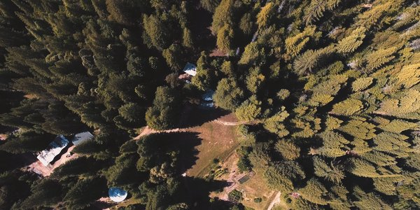 The house is barely visible from above because it so thoughtfully blends into the surrounding landscape.