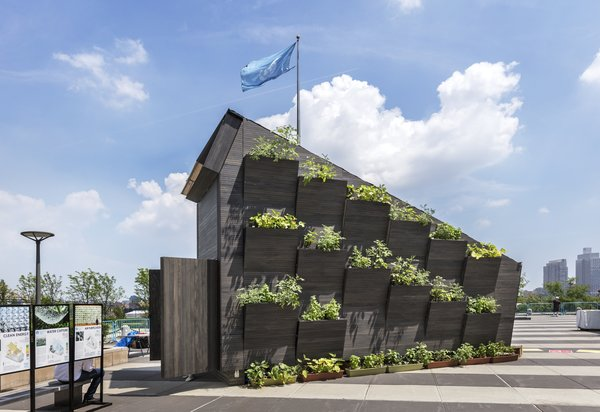 The tiny home was oriented to best take advantage of the sun, and an entire facade of the building was designed to hold greenery.