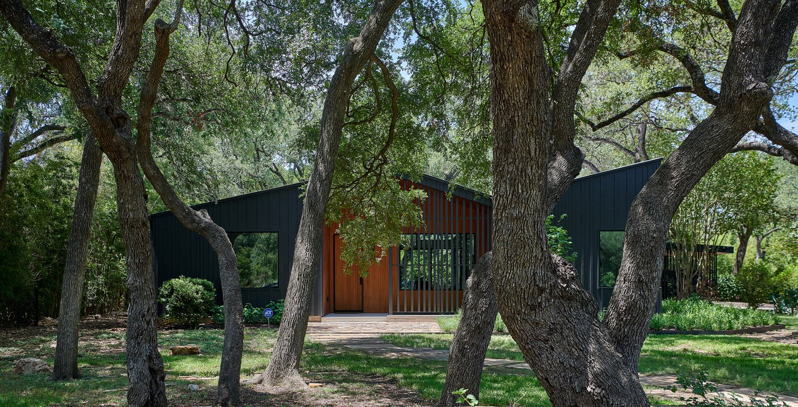Ridgeview House exterior and oak trees
