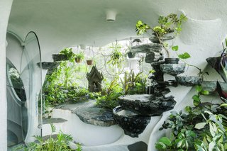 The lush spaces of the Garden Room incorporate plants and organic forms.