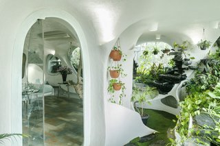 Hanging and potted plants and a moss floor strike contrast with the apartment's white walls.
