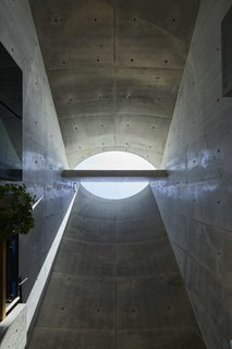 The two curves of the roof meet at the center, creating a sculptural skylight that bounces light off a dividing plane of concrete.
