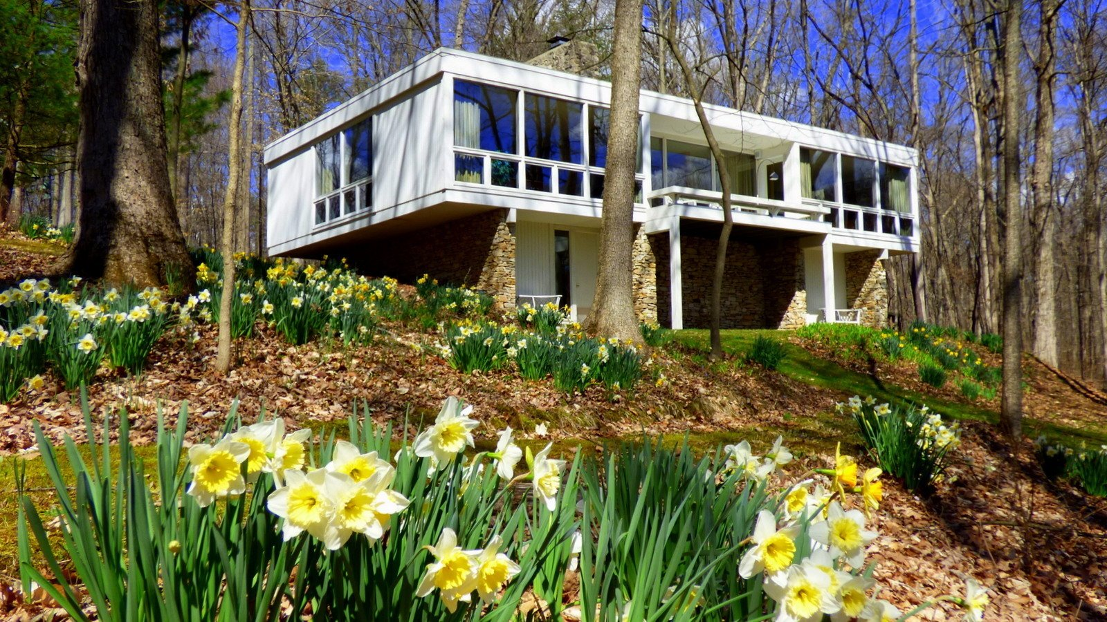 Southeast facing glass wall.  There are about 10,000 bulbs in the landscaping.    Phelps Residence by Larry Phelps