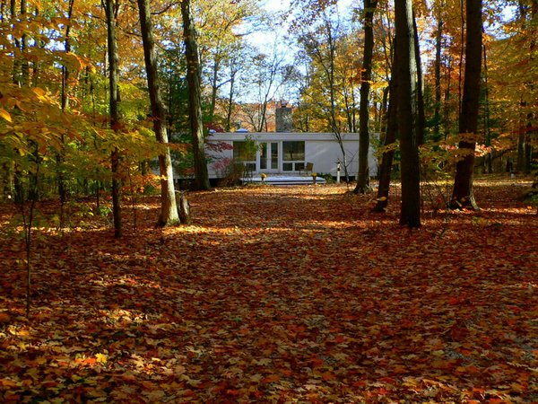 The house is located at the end of a quarter-mile long driveway through the forest.  Phelps Residence by Larry Phelps