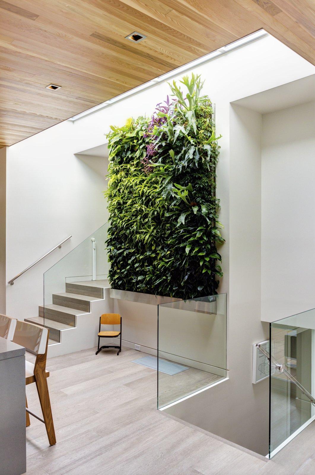 Garden Wall Residence, vertical garden  Garden Wall Residence by Garret Cord Werner