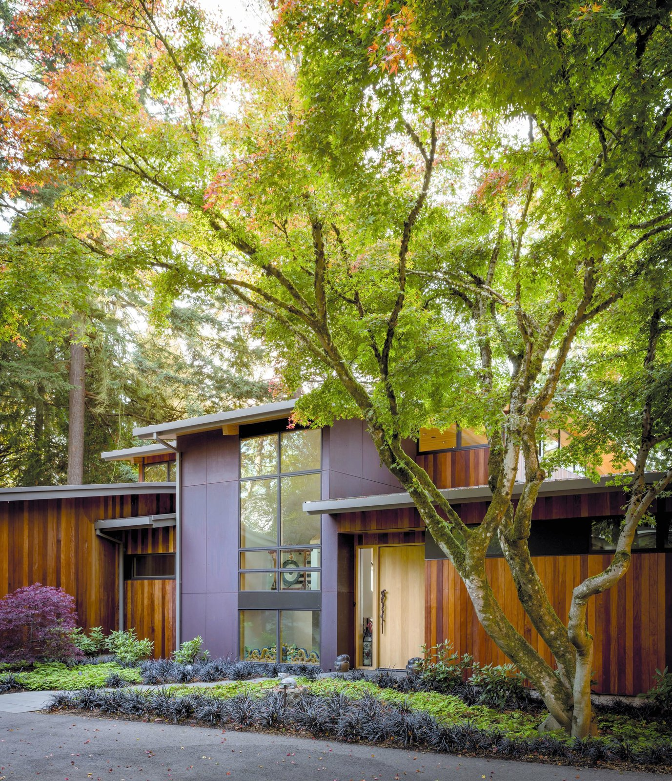 Exterior, Curved RoofLine, and House Building Type Wave House | Olson Kundig  Wave House by Olson Kundig