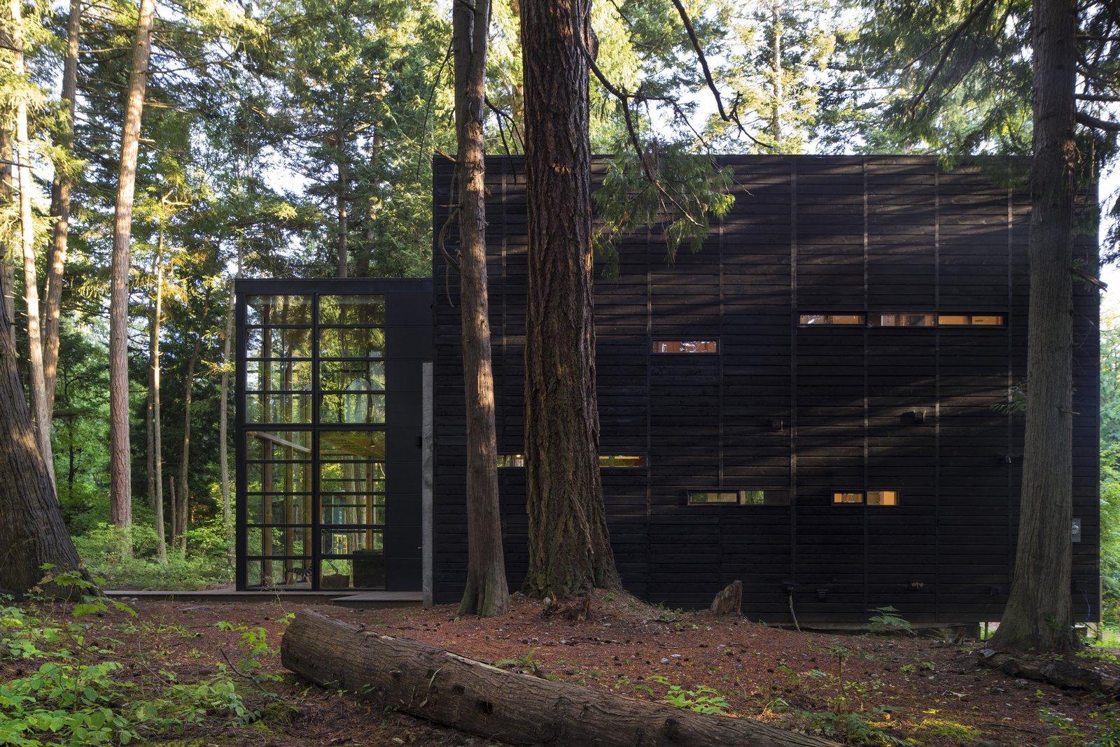 The cedar siding was treated with an Auson Black Pine Tar Stain.  Lightbox by Bohlin Cywinski Jackson