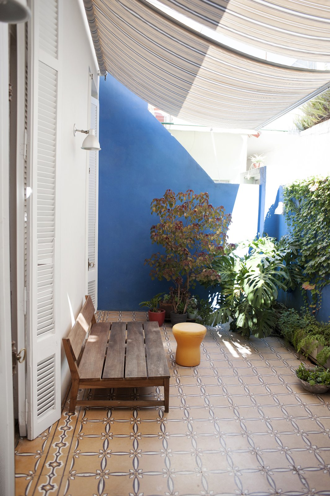 The petiribi wood bench,  the sunshades and the plants over the blue walls set up a unique atmosphere.  Artigas
