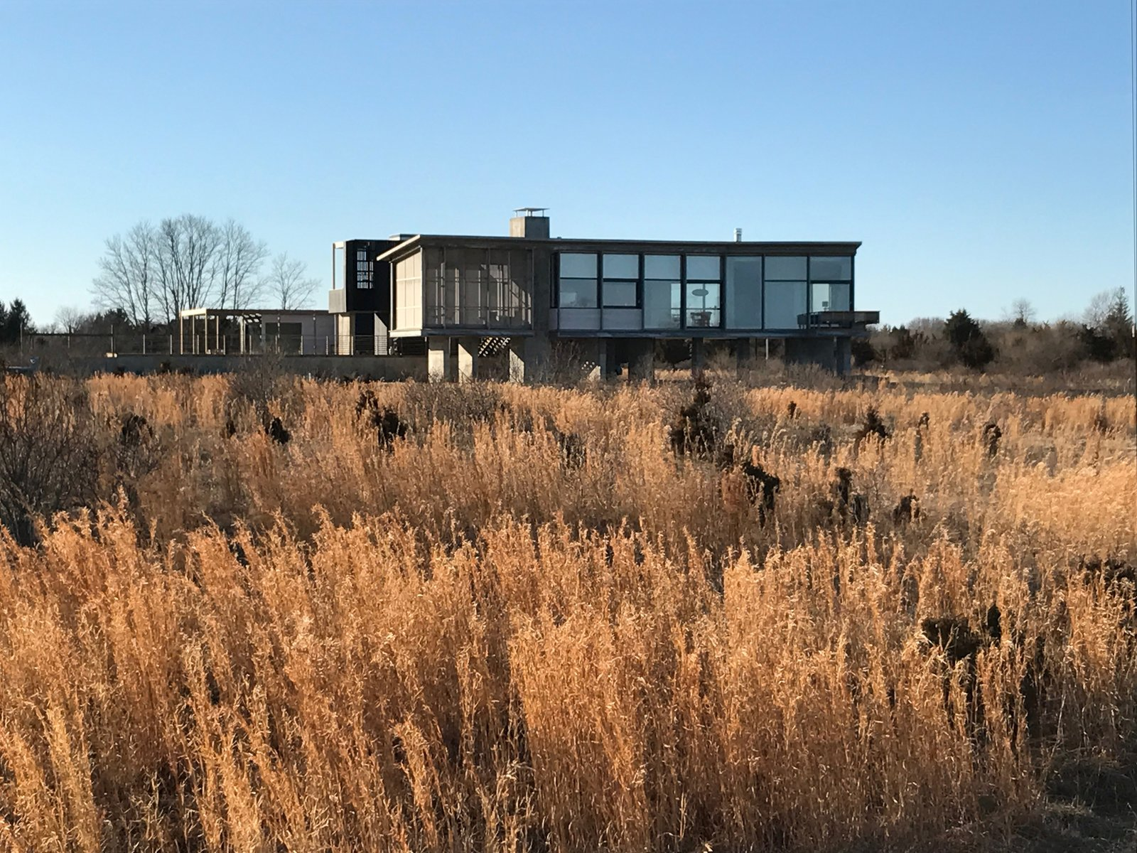 View From The Wetlands  Orient House V by Ryall Sheridan Architects