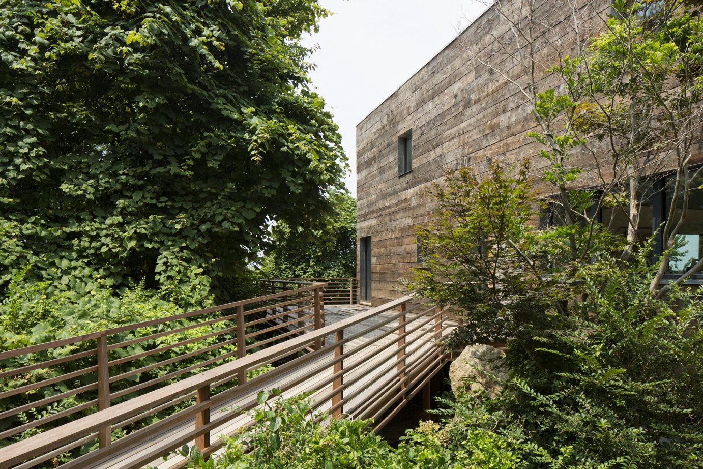 Entry   Orient House IV by Ryall Sheridan Architects