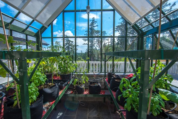 Authentic English Green House - Eagle's Nest Estate
