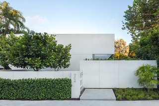 Entry way to a modern, contemporary Key West home.  Clean lines, planting was done with minimal species and in groupings.