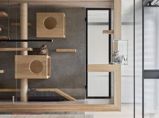 5 Modern Cat Furniture Designs Both Pets And Owners Adore Dwell