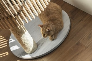 The marble base stabilizes the tree, and the choice of material was inspired by designers seeing a cat stretched out on a marble floor to cool itself. The post is wrapped in Japanese-made hemp cord, which is ideal for cats to sharpen their claws and can be replaced when it gets tattered.
