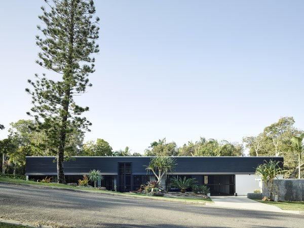 """The front facade is an unassuming composition of dark-painted timber and privacy screening. """"We thought about the idea of the house being like a quiet shadow in the foreground of the reserve,"""" says the firm."""