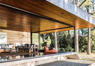 A screened porch is designed to immerse occupants in the natural setting. The leather chaises are by Mario Bellini and date from the 1970s.