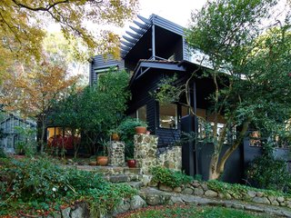 The home's exterior is painted Dulux Black so as to sit in contrast with the verdant setting.