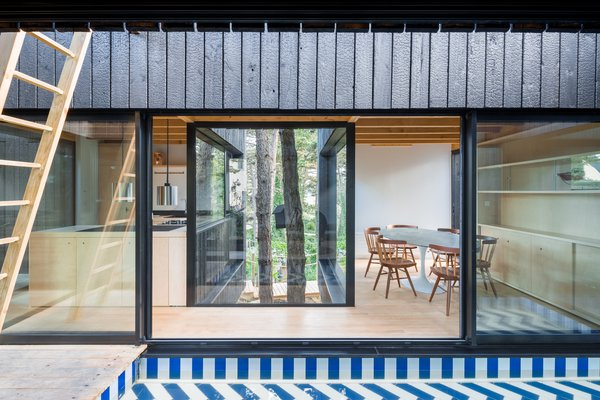 "The kitchen and dining area are separated by a glassed volume that wraps two mature trees. ""The views from the house are defined precisely by materiality so that the forest seems to enter the house,"" said the firm."