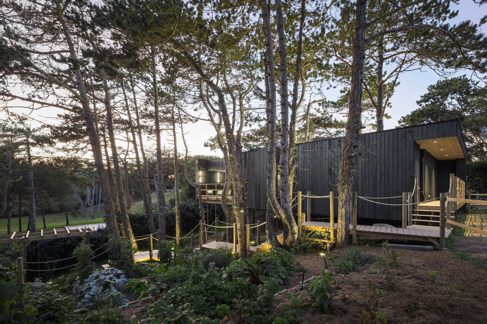 Treehouse by Atelier Victoria Migliore Exterior