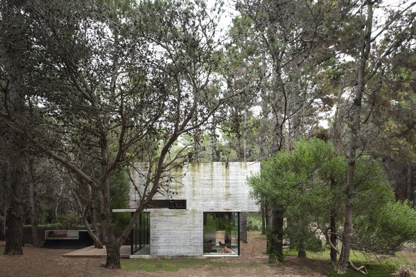 A glass enclosure at the front corner visually lightens up the concrete massing, while bringing in natural light filtered through the surrounding trees.