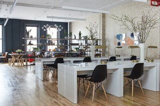 """""""The space is long and narrow, and although we wanted an open seating area, we also wanted natural light to make it to the back of the office,"""" says Warner. """"We achieved this by separating zones with open shelving and plants, which act as a filter without actually blocking the light."""" She chose the Safavieh Cecilia Retro Mid-Century 5-Tier Wood Etageres from Bed Bath & Beyond to do so."""