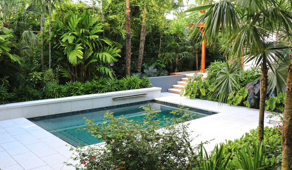 The pool was relocated and the couple redid its finishes with the Tuttle Pool Company, installing Pebble Tec, a waterfall feature, and surrounding it with modern, large-format pavers.