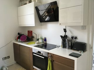 The kitchen had a single run of jarring, brown Wenge wood-type veneered cabinets and a cream Corian worktop. The existing stovetop and oven were reused in the remodel.