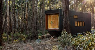 Go Off-Grid in This Tiny Australian Cabin Made for Digital Detox