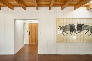 "The artwork is titled ""Crashing Buffalo"" and is by Tucson/Los Angeles artist Ishi Glinsky."