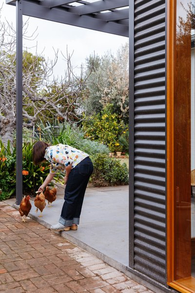 """One of the owners steps out on the new terrace with one of the many household animals. """"We have moved the chicken coop so we can enjoy their busy, chooky lives,"""" they explain."""
