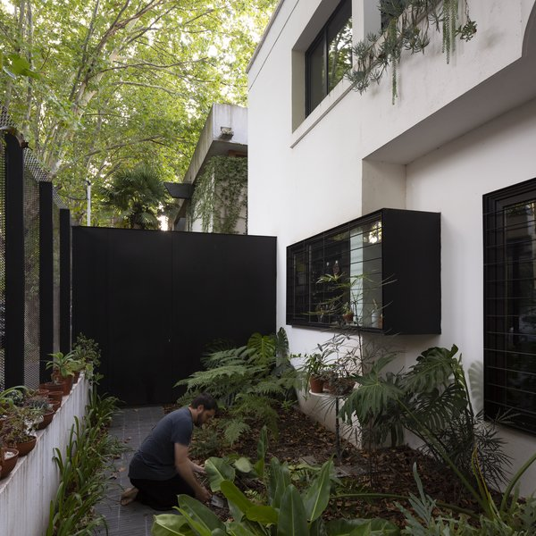 """A front garden creates a moment of pause. """"The lower front window has a two-inch-thick box going around it,"""" says Martin. """"It was a solution to enhance the kitchen window, bypassing the corner of the facade and the column it contained."""" This would enlarge the second kitchen counter inside, where the stove is placed."""