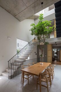 Natural light cascades over the stairwells to reach the tree growing in the dining room.