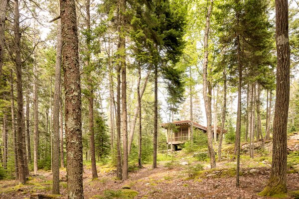 The Far Cabin by Winkelman Architecture is set on the forested coast of Maine.