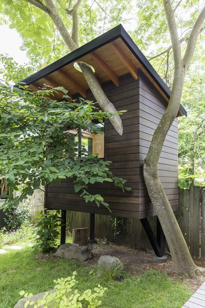 """Technically, this small building is not a tree house, since it's braced at the ground by supports, but Grey didn't want to compromise the tree, which """"doesn't have a very long lifespan,"""" the designer says. """"So, I didn't want to jeopardize however long that tree had with any excess baggage."""""""