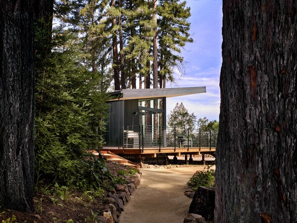 """Boyer first visited the site in 2018 for the redesign. Having grown up in the area, it was awful to see the devastating effects of the fire, but there were also signs of regrowth just a year later. """"The redwoods had started to grow a little fuzzy green against the charred black [bark],"""" says Boyer. """"It was kind-of promising. It felt hopeful that nature was coming back so quickly."""""""