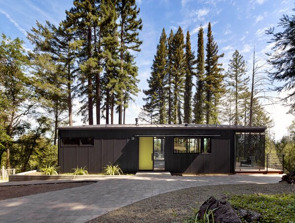 The cabin has charcoal-colored metal siding and a punchy yellow-green front door for contrast.