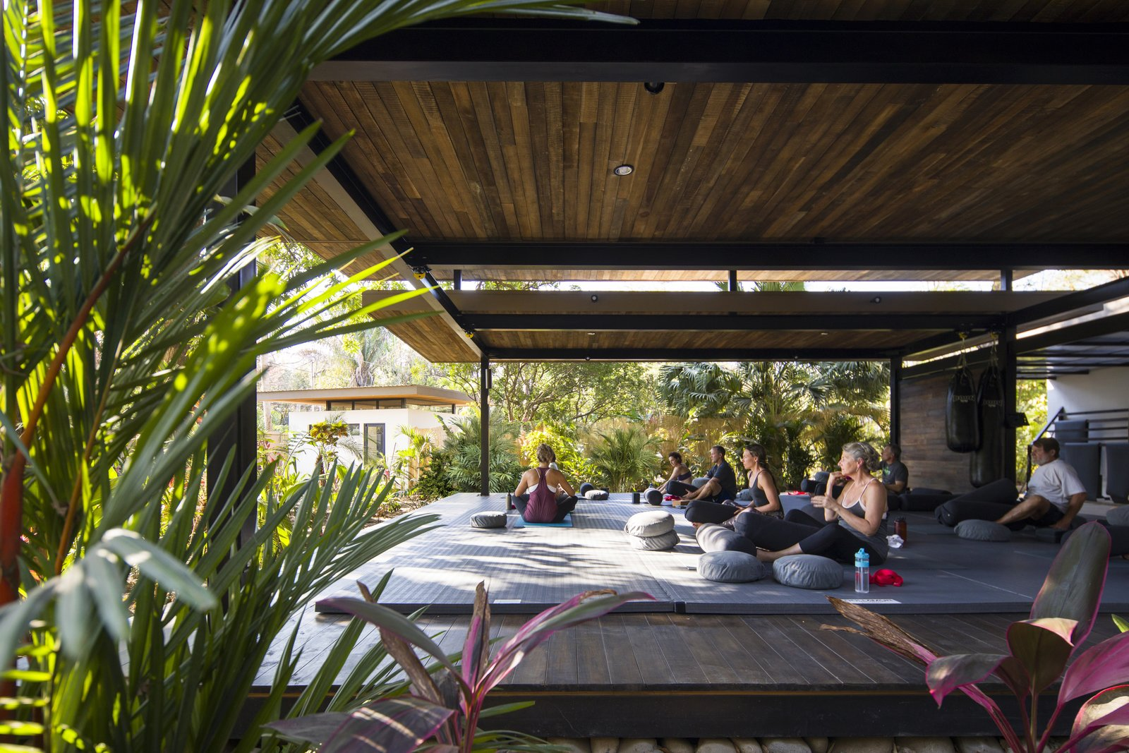 Outdoor, Large Patio, Porch, Deck, Wood Patio, Porch, Deck, and Shrubs The tropical modernism of the resort provides the perfect backdrop for exercise and relaxation in the Costa Rican jungle.  Photo 11 of 11 in Decompress at This Boutique Hotel and Yoga Retreat in the Costa Rican Jungle