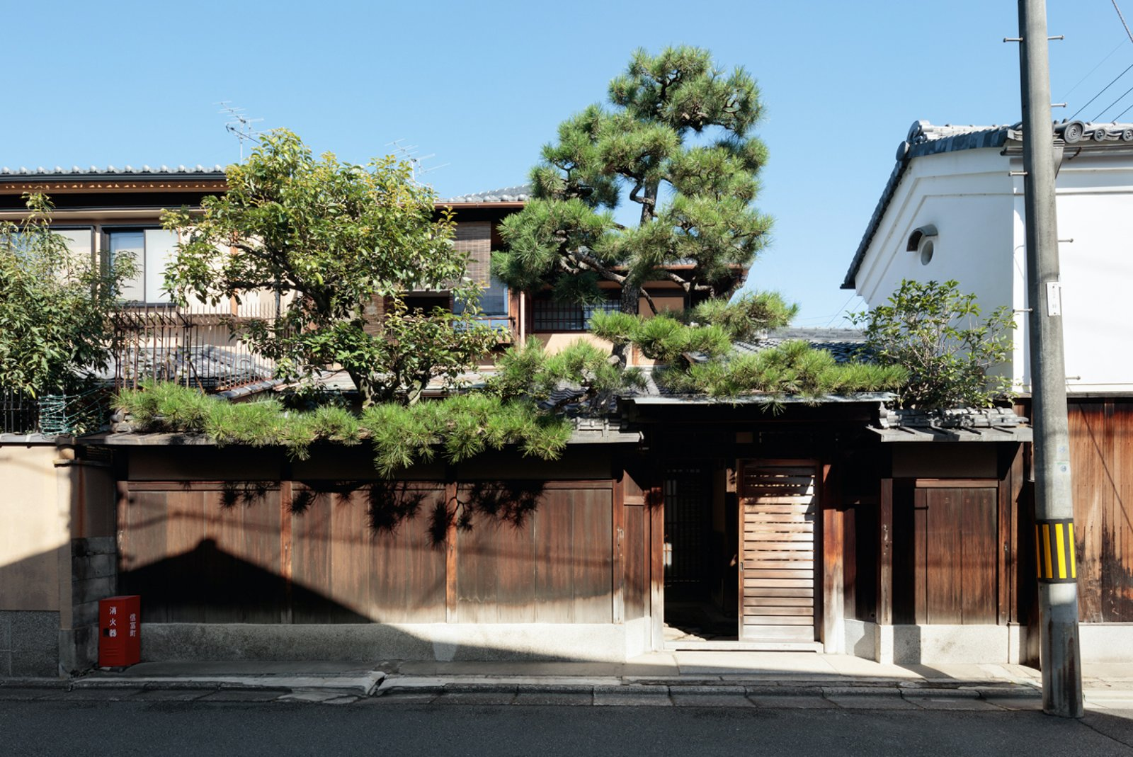 Outdoor, Wood Fences, Wall, Trees, Front Yard, and Vertical Fences, Wall A private entry allows guests to rest and explore as they please.  Photo 2 of 13 in A Minimalist Townhouse Provides Serene Accommodations in Historic Kyoto