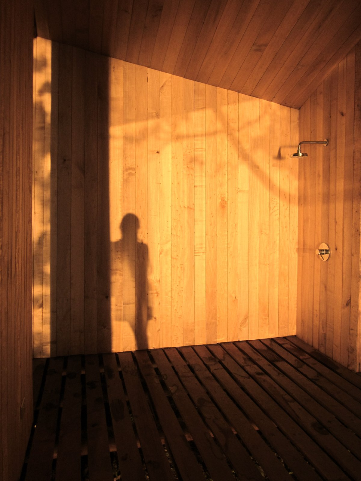 The simply clad vertical surfaces allow light and shadow to reflect and play.  Photo 7 of 9 in A Timber-Clad Sauna in Chile Angles For Lakeside Views